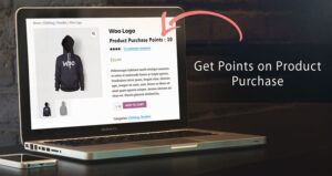 woocommerce ultimate points and rewards中文汉化