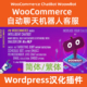 WooCommerce-ChatBot-WoowBot汉化下载